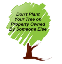 Don't Plant Your Tree on Property Owned by Someone Else
